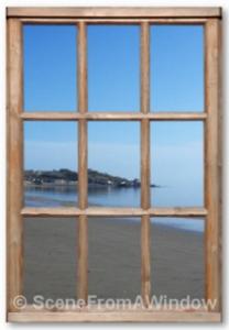 Scenes from windows