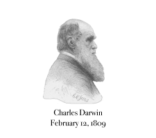 Cartesian Bear's portrait of Charles Darwin