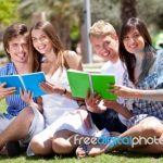 Understanding Private Student Loans