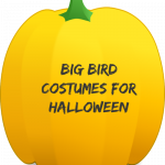 Big Bird Costumes for Halloween