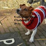 Collegiate Team Clothing For Pets