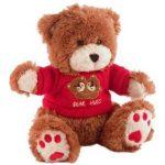 Teddy Bear Nanny Cam Guide