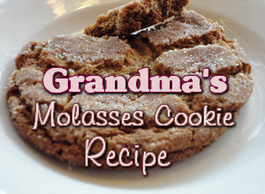 Grandma's Molasses Cookie Recipe