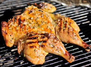 Chicken on the Grill Recipes