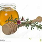 Personal Care:  Manuka Honey For the Skin