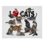 Cats In Art: Beautiful Cat Art