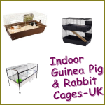 Indoor Guinea Pig Cages UK