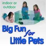 Pet Play Pens - Safe Fun for Small Pets