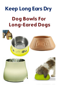 Food Dishes For Long Eared Dogs