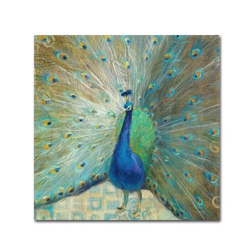 peacock home decor webnuggetz com